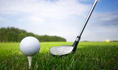 Golf Скачать Игру img-1
